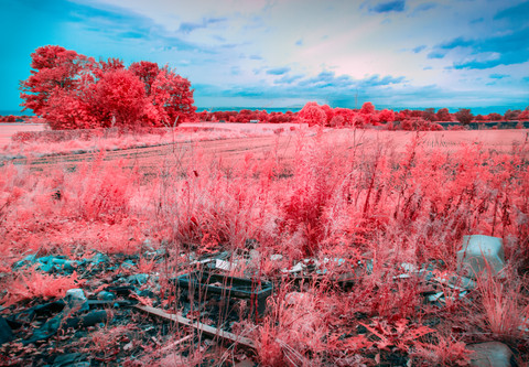 Landscape of An Artificial Nature