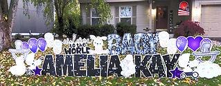 Baby Yard Sign Dublin, Ohio