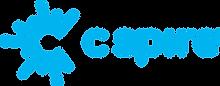 cs_logo_cyan.png