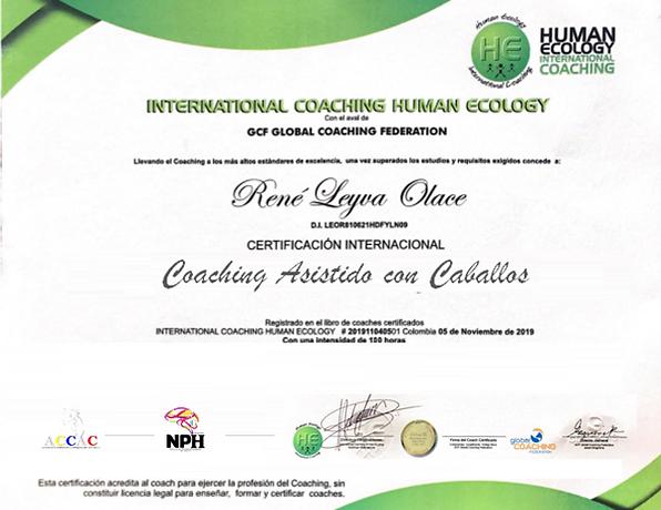 international coaching asistido con caba