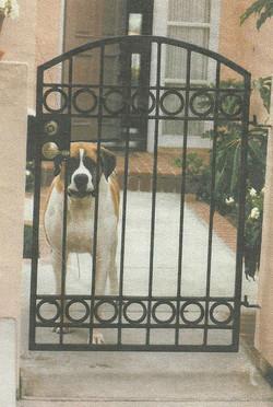 Custom Iron Puppy Gate