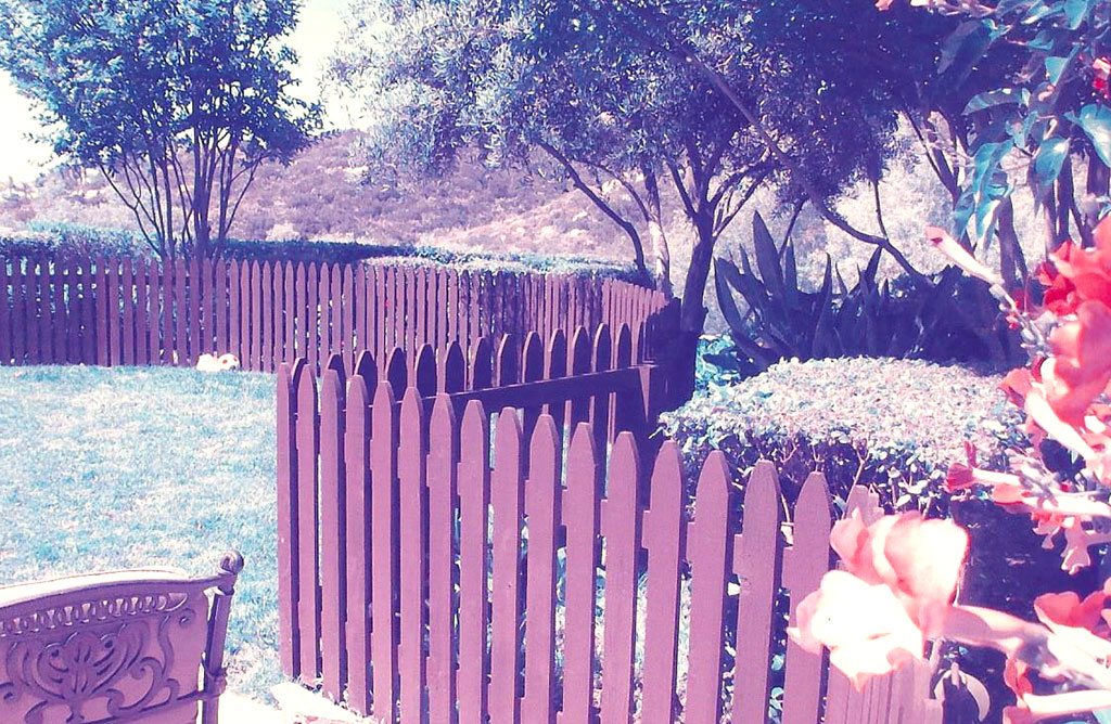Rounded Picket Fence