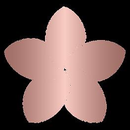 Sflower-rose(web).png