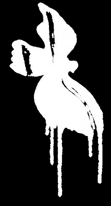 Mago bird.png