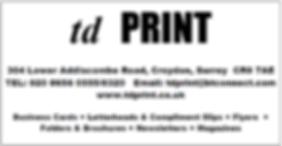TD print.PNG