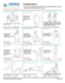 Full Body Stretch.png