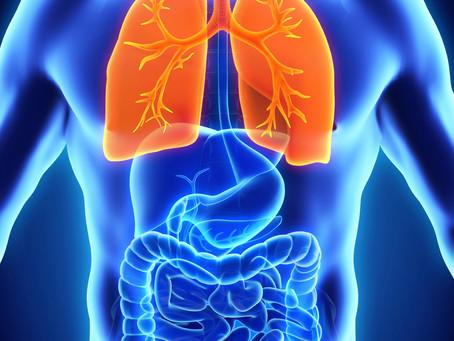 Week 5: The Power of Breath