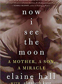 now I see the moon book.jpg