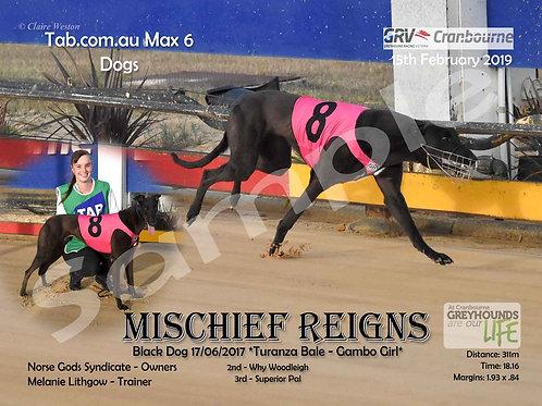 15/02/19 Mischief Reigns