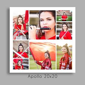 26Apollo 20x20.jpg