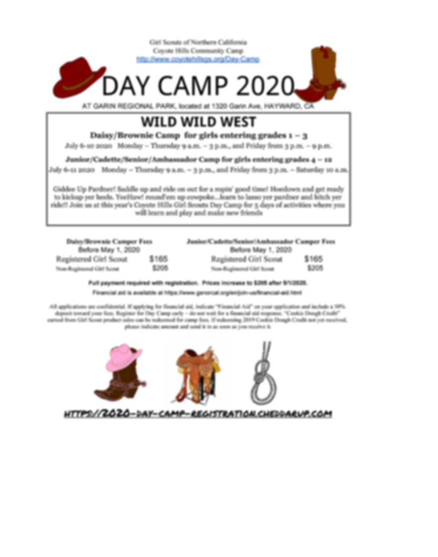 Day Camp Flyer 2020_Page_1.jpg
