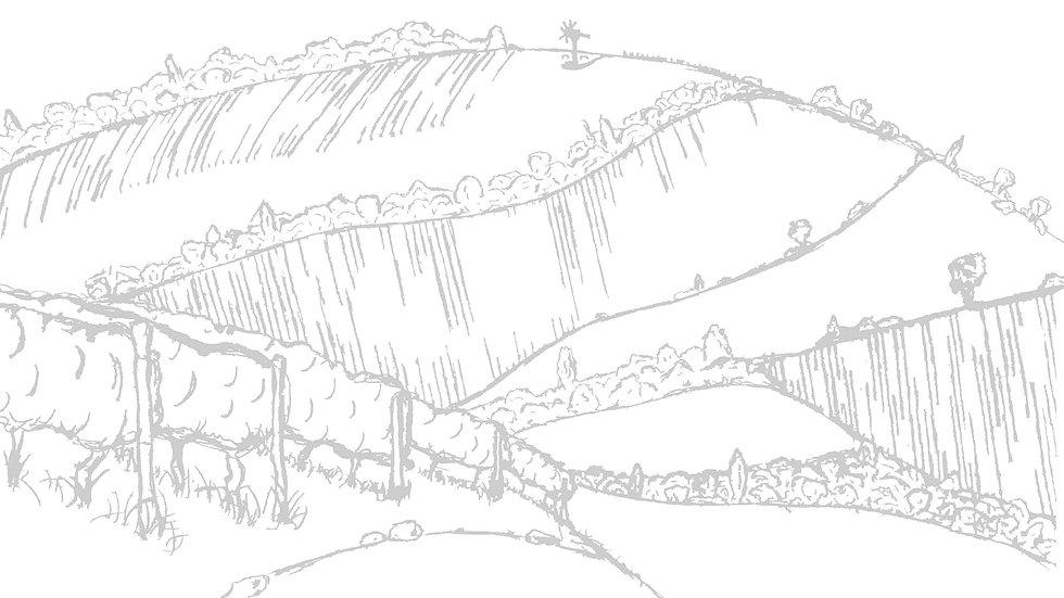Weingartenlanschaft Zeichnung