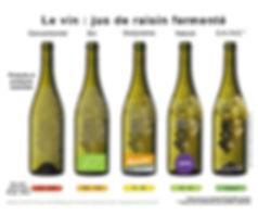 Vins Sains