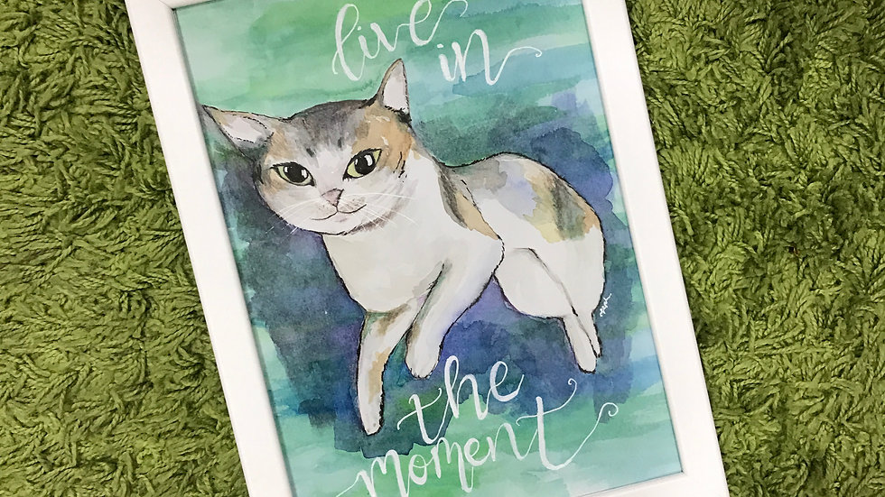 Live In The Moment Like A Cat Drawing
