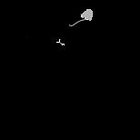 Logo Markenwiedergabe+Schutzzeichen_schw