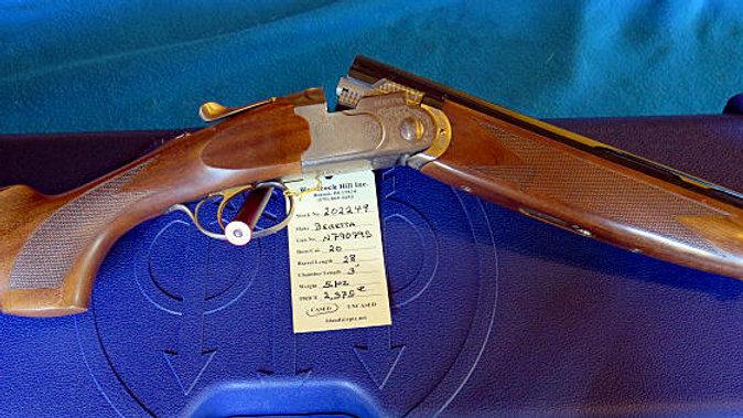 Beretta Silver Pigeon   202249