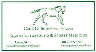 equine ultrasound.JPG