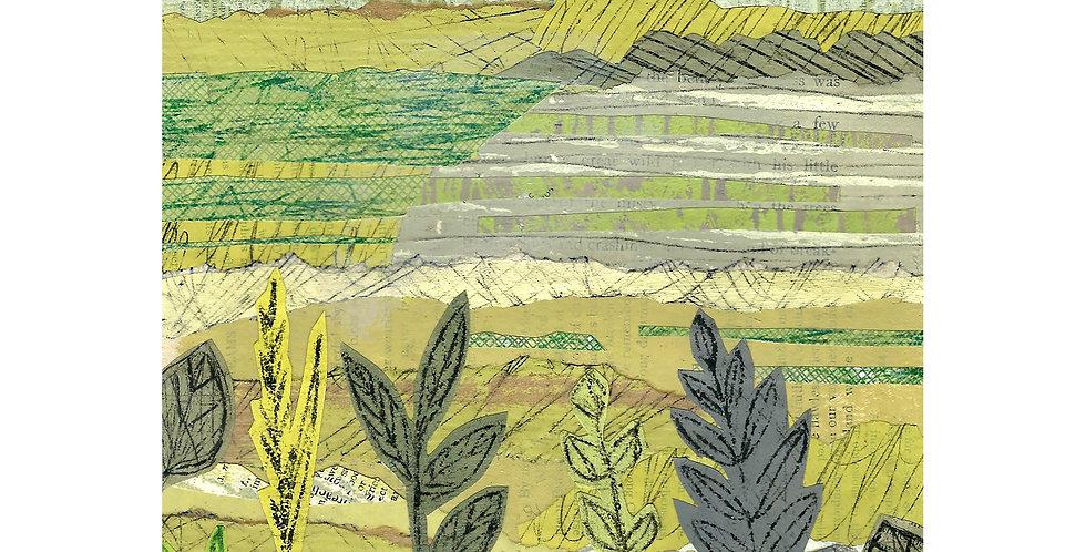 Hills & Hedges card
