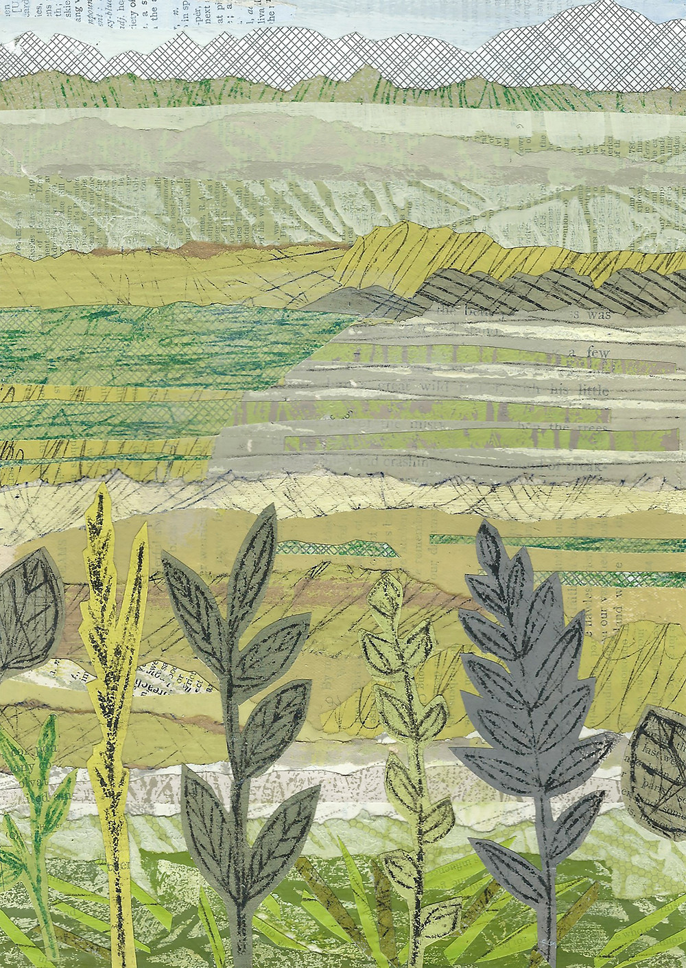 Hills & Hedges, a print by Sue Johnson