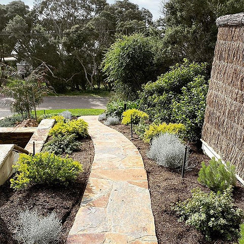 Coastal vibes in Blairgowrie. This garde