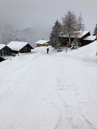 road leading chalet