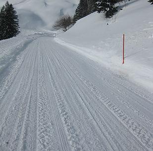 Road leading to Crettet-Bornex