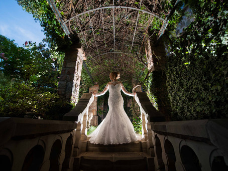 Kerwin and Abbigail's Wedding   Shepstone Gardens