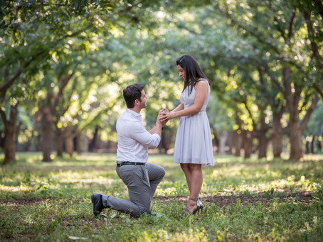 Carlos and Monica get Engaged | Green Leaves Country Hotel