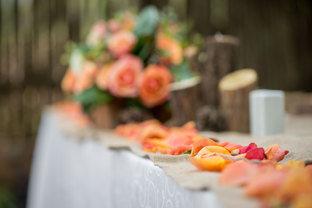 safari styled weddings