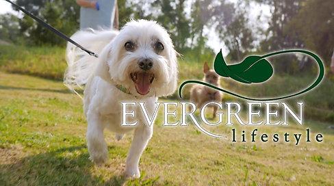 Evergreen Retirement Corporate Video
