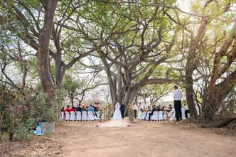 Safari wedding photos at Kuthaba Bush Lodge