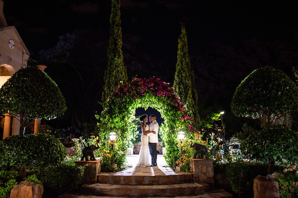 shepstone gardens night photos