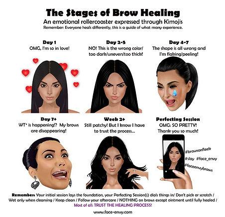 Brow Healing Kimoji Guide.jpg