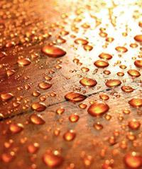 parquet-resistente-agua.jpg