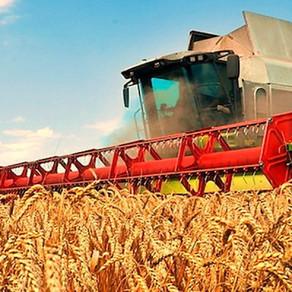 Как сделать карьеру в сфере сельского хозяйства