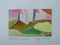 Looking East