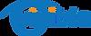 VP-logo (2).png