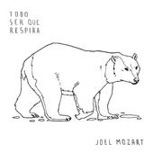 desenho de urso polar para colorir