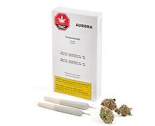 Aurora Aces Sativa Prerolls, 5 x 0.5g Pr