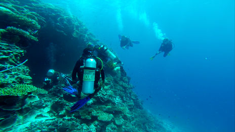 scubadiving trips travel