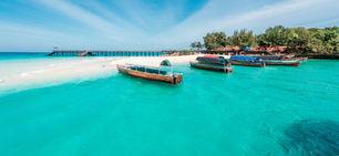 Zanzibar-strand-palmer-hav-baad-sck.jpg