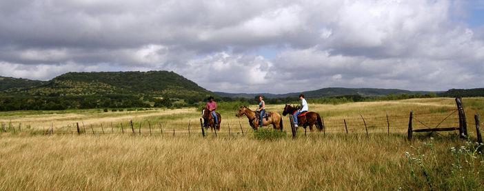 horse riding, polo