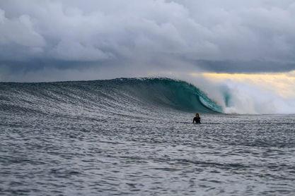 Surf Travelixir.jpg