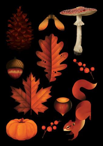 An Autumnal Adventure
