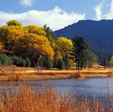 Cuyamaca Autumn