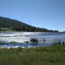 shimmering lake.jpg