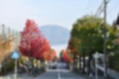 tutuji-01.jpg