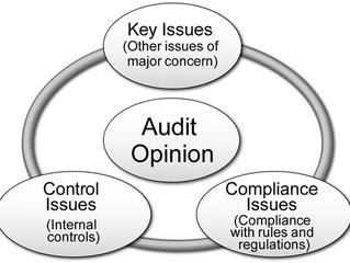 Integrated Audit Teams