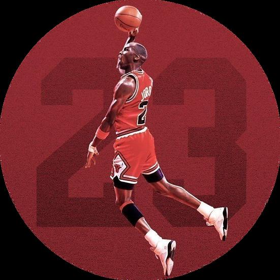 MJ Fly