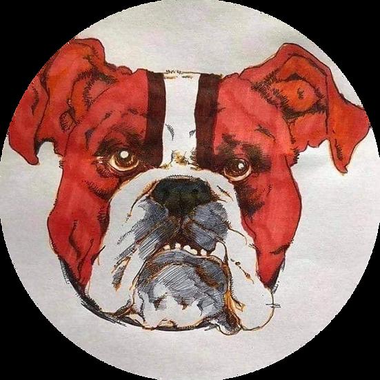 Browns Stripe Dog